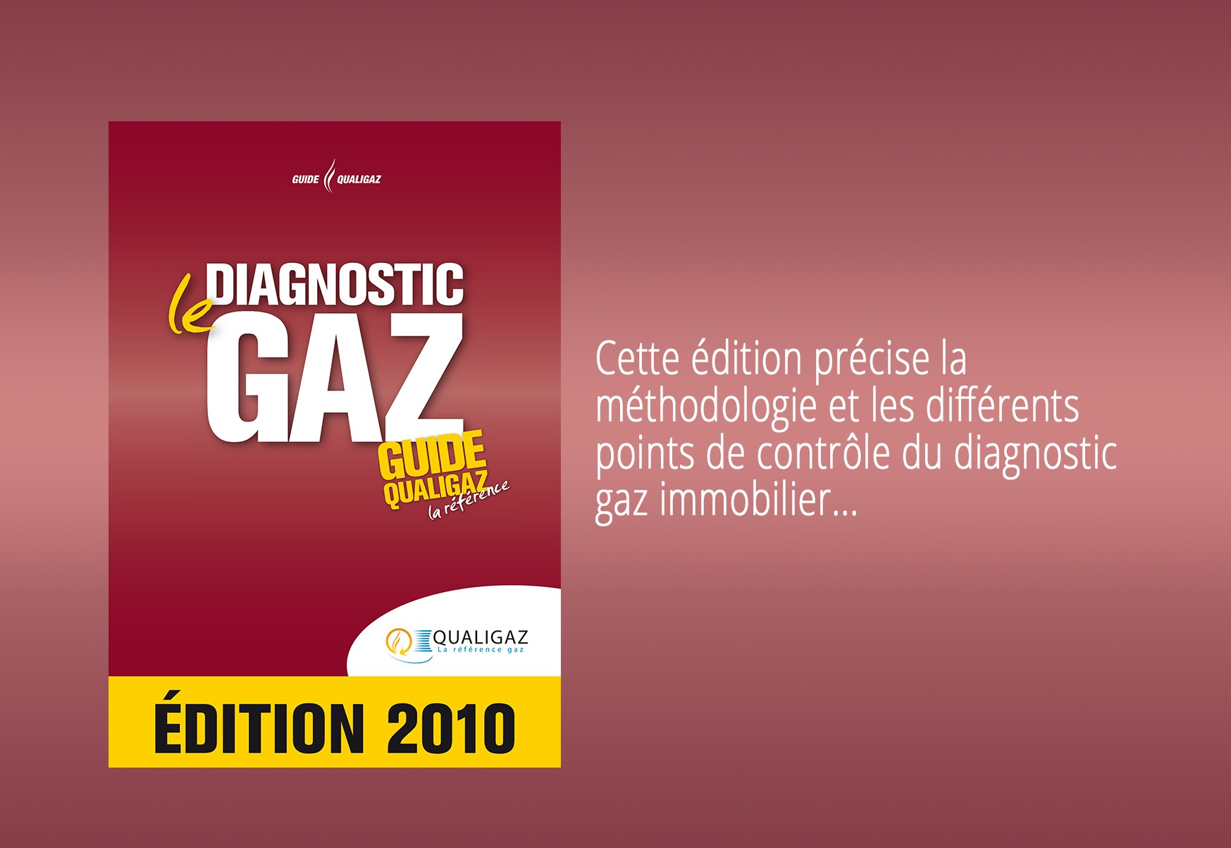 Diagnostic gaz : le Guide Qualigaz
